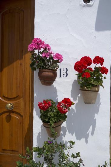 Decorative Geranium Flowers in Pots on the Walls-Natalie Tepper-Photo