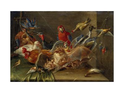 Decorative Still-Life Composition with Birds and Two Bats-Jan van Kessel the Elder-Giclee Print