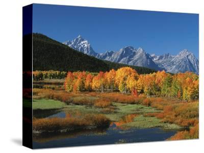 Mt. Moren, Oxbow Bend, Grand Tetons National Park, Wyoming, USA