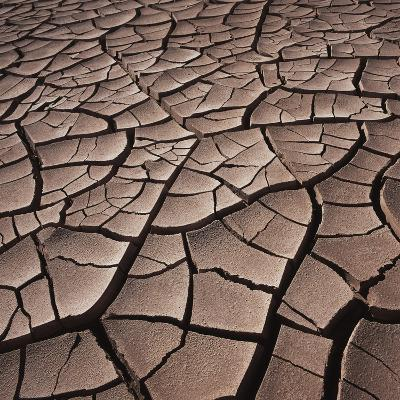Deep Cracks in the Desert--Photographic Print