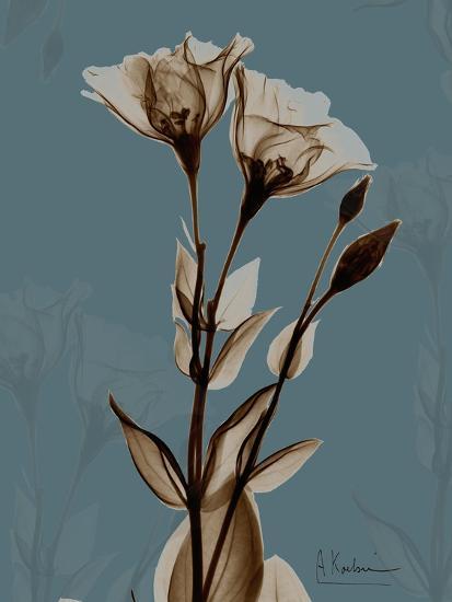 Deep Flora 2-Albert Koetsier-Premium Giclee Print