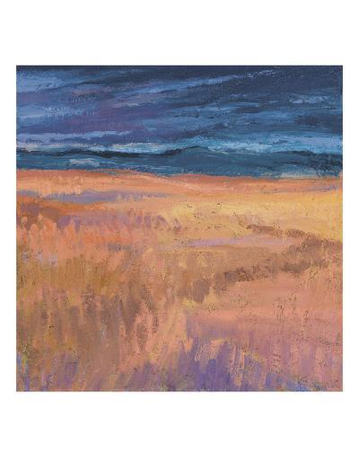 Deep Sky and Field-Jeannie Sellmer-Art Print