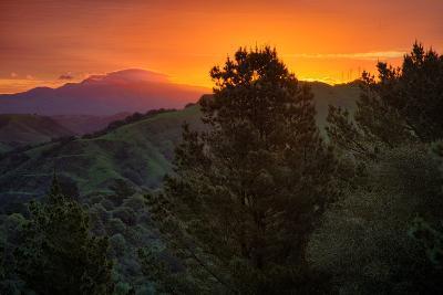 Deep Sunrise Glow, Oakland Hills Bay Area California-Vincent James-Photographic Print