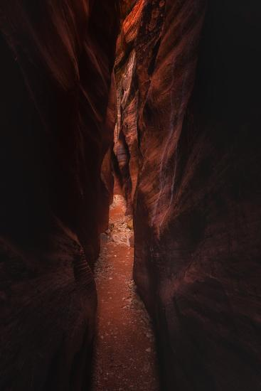 Deep Trek Buckskin Gulch Slot Canyon Utah Southwest-Vincent James-Photographic Print