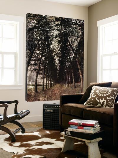 Deep Woods I-Jean-Fran?ois Dupuis-Loft Art