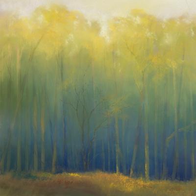 https://imgc.artprintimages.com/img/print/deep-woods-in-summer_u-l-p6epd60.jpg?p=0