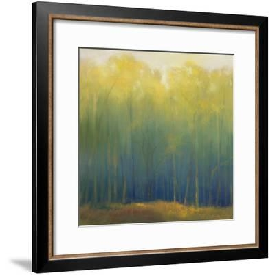 Deep Woods in Summer-Teri Jonas-Framed Premium Giclee Print