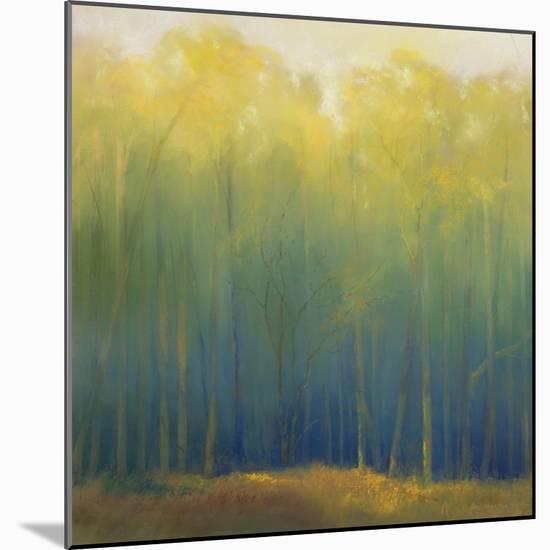 Deep Woods in Summer-Teri Jonas-Mounted Premium Giclee Print