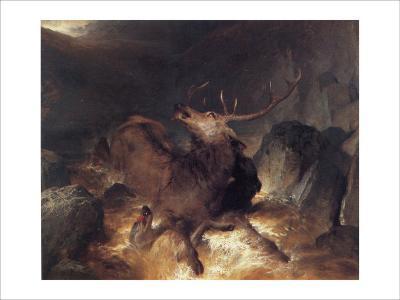 Deer and Deerhounds in a Mountain Torrent-Edwin Henry Landseer-Giclee Print
