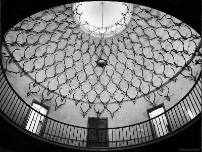 Deer Antlers Hanging in Domed Ceiling of Gordon Castle-William Sumits-Photographic Print