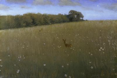 Deer at Dusk in a Meadow with Flowers-Harald Slott-M?ller-Giclee Print