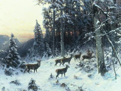 Deer in a Snowy Wooded Landscape-Arthur Julius Thiele-Giclee Print