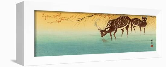 Deer in Shallow Water-Koson Ohara-Framed Stretched Canvas Print
