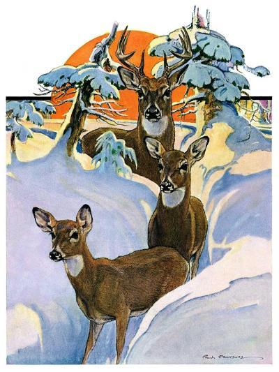 """""""Deer in Snow,""""February 7, 1931-Paul Bransom-Giclee Print"""