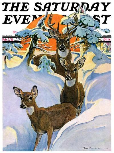 """""""Deer in Snow,"""" Saturday Evening Post Cover, February 7, 1931-Paul Bransom-Giclee Print"""
