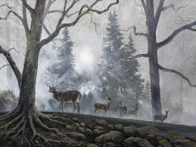 https://imgc.artprintimages.com/img/print/deer-path-i_u-l-q11kja40.jpg?p=0