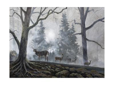 https://imgc.artprintimages.com/img/print/deer-path-i_u-l-q11kjbt0.jpg?p=0
