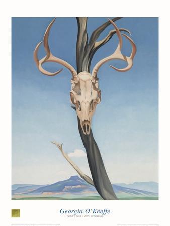 https://imgc.artprintimages.com/img/print/deer-s-skull-with-pedernal_u-l-erl2t0.jpg?p=0