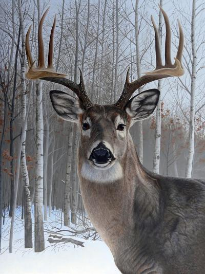 Deer-Rusty Frentner-Giclee Print