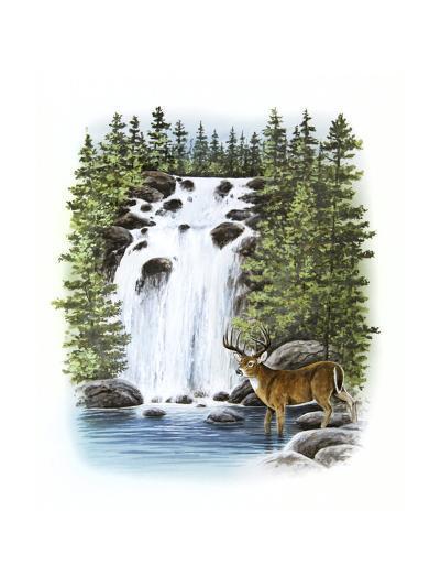 Deer--Giclee Print