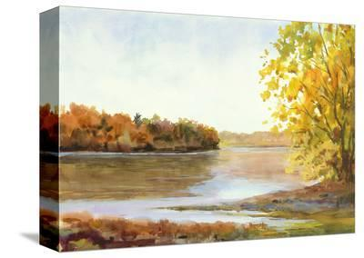 Delaware North from Stockton-Elissa Gore-Stretched Canvas Print