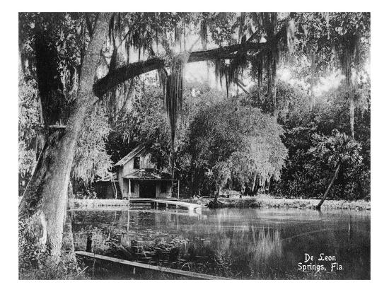 Deleon Springs, Florida - Scenic View-Lantern Press-Art Print