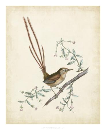 https://imgc.artprintimages.com/img/print/delicate-birds-i_u-l-f5bx1g0.jpg?p=0
