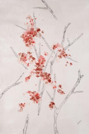 https://imgc.artprintimages.com/img/print/delicate-blossoms-ii_u-l-q120y0y0.jpg?p=0