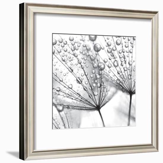 Delicate Wisps II-null-Framed Art Print