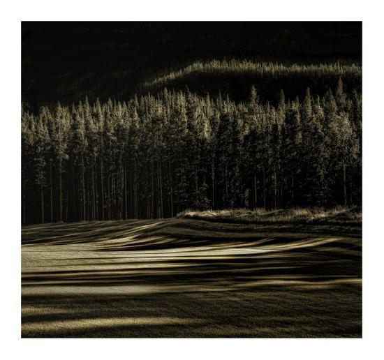 Delicious Fall-Yvette Depaepe-Giclee Print