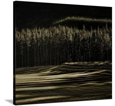 Delicious Fall-Yvette Depaepe-Stretched Canvas Print