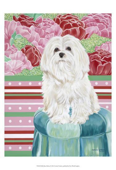 Della Rose Maltese-Carolee Vitaletti-Art Print