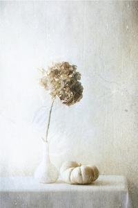 Autumn Feelings by Delphine Devos