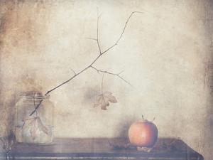 Fall, Leaves, Fall by Delphine Devos