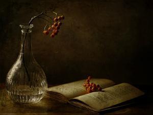 In the Dark of My Days by Delphine Devos