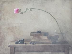 Mild Morning of October by Delphine Devos