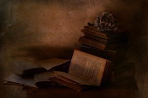 Old Books by Delphine Devos