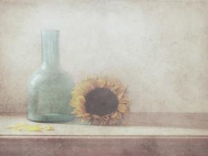 Sunflower by Delphine Devos