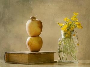 Wild Flowers by Delphine Devos