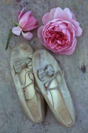 Dance for Me by Den Reader