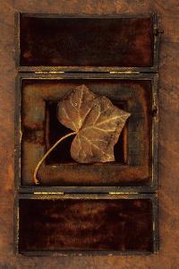 Dried Leaf by Den Reader