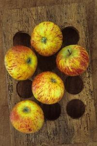 Five Apples by Den Reader