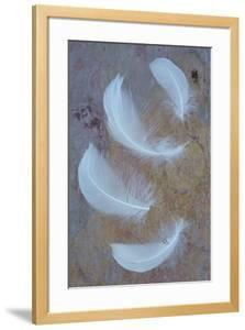 Four Curved White Swan Feathers Lying On Pink And Orange Rough Slate by Den Reader