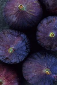Purple Figs Iii by Den Reader