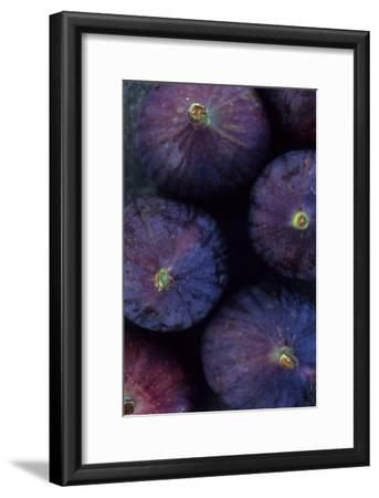 Purple Figs Iii