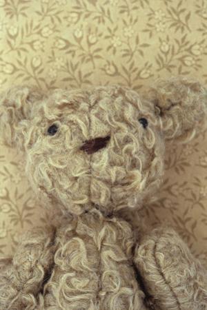 Vintage Toy Bear by Den Reader