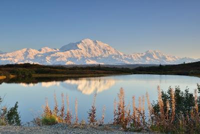 Denali Mountain and Reflection Pond-lijuan-Photographic Print