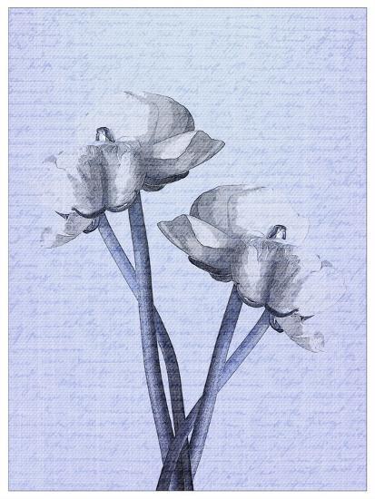 Denim Floral 1-Kimberly Allen-Art Print