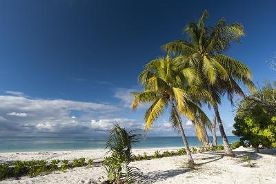 Denis Island, Seychelles, Indian Ocean, Africa-Sergio Pitamitz-Photographic Print