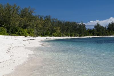 Denis Island, Seychelles-Sergio Pitamitz-Photographic Print